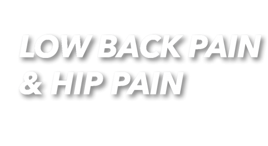 Bib_Low Back Pain and Hip Pain_Text